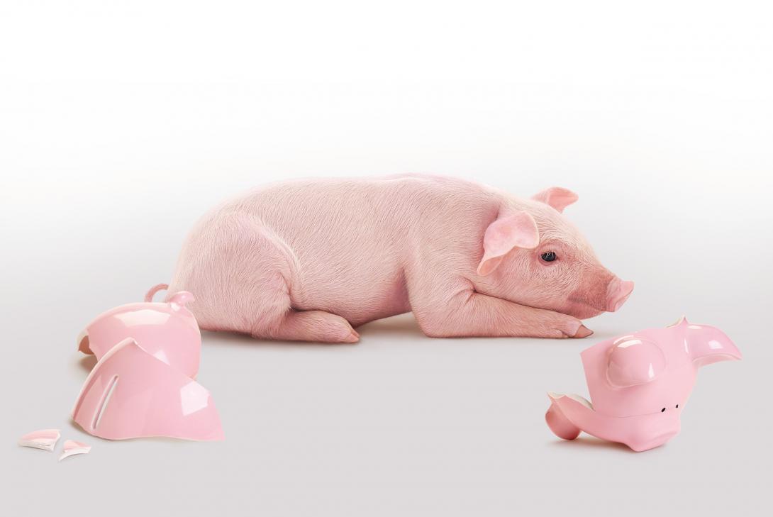 Il Salvadanaio digitale di Gimme5 per risparmiare e investire in modo semplice