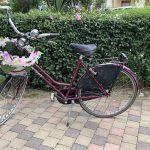 Noleggio bici City Shopping Lignano Sabbiadoro